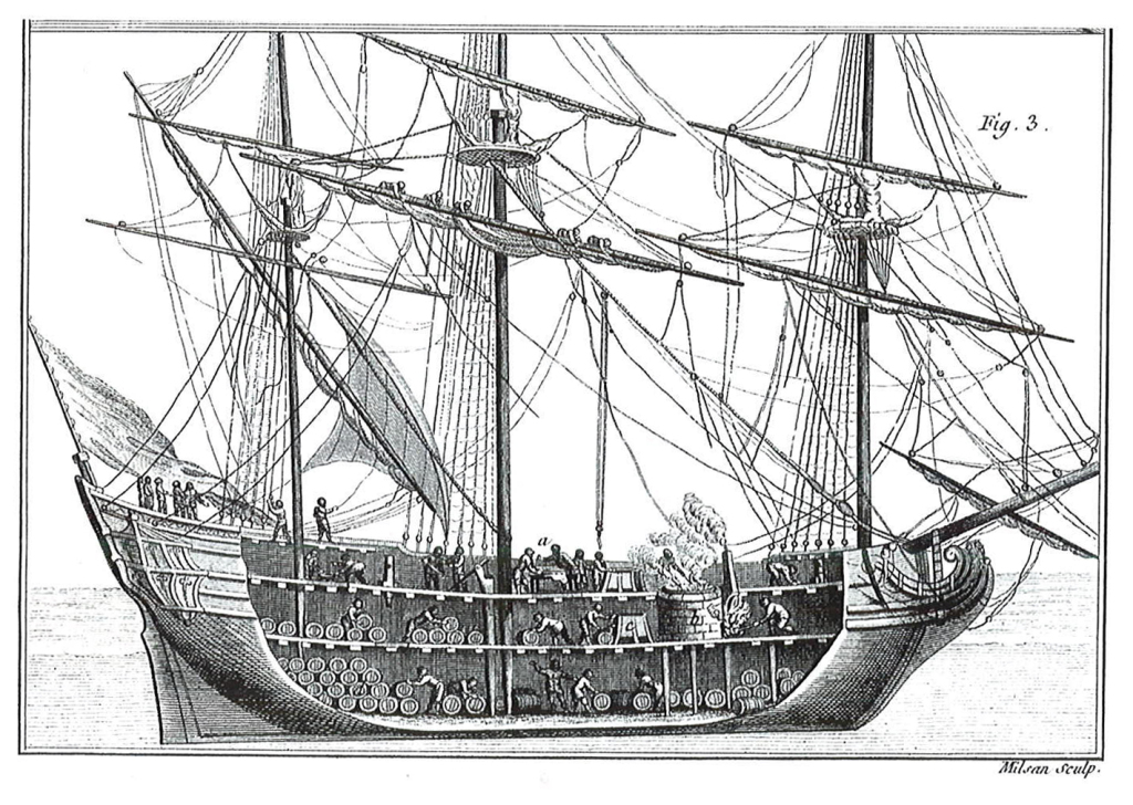 whaling-ship-drawing-6